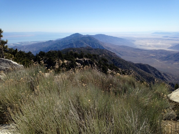 View from Toro Peak